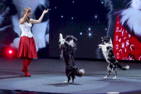 ALENA SMOLÍKOVÁ - FREESTYLE DOGS | KEYSI A JERRY